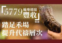 5779遍地迎接豐收